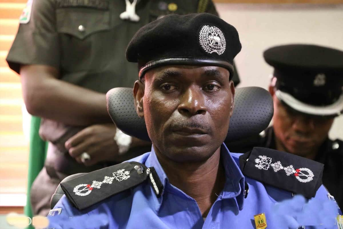 Deployment of police commissioners is based on merit not bias - NPF