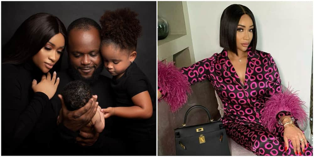 Noella at 4: Beautiful Photos From Barbie-Themed Birthday Party of Bola Tinubu's Granddaughter