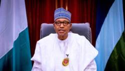 Herdsmen carrying AK-47 are not of Nigerian origin - Buhari declares
