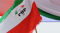 2023: Ba laifi bane idan PDP ta zaɓi ɗan takarar shugabancin ƙasa daga Arewa, Sanatan Kudu