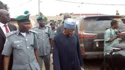 Customs officers intercept foreign currencies in baby diapers at Kano airport
