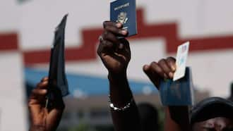 Citizenship-by-Investment and Caribbean countries that have the program