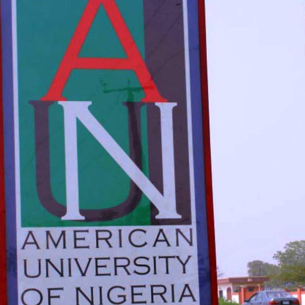 American University of Nigeria undergraduate courses