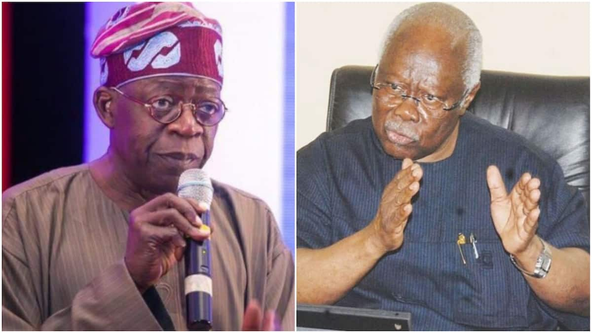 I challenge Tinubu to deny begging Abacha for appointment - Bode George