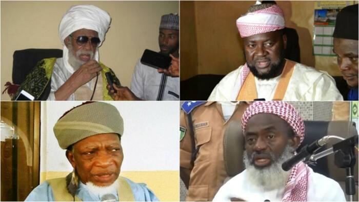 2019: Abinda manyan Malaman Musulunci 5 suka fada game da zaben Buhari da Atiku