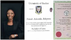 Nigerian female law graduate cries out that she desperately needs a job, shares academic degrees, many react