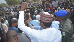 Yobe state district head suspended for reportedly 'insulting' Gov Mai Mala Buni