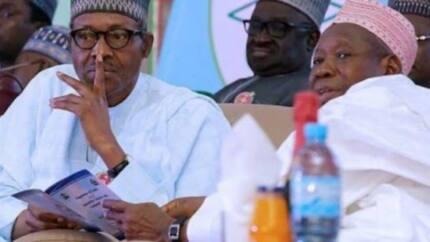 President Buhari dragged to court over Ganduje's alleged bribery scandal