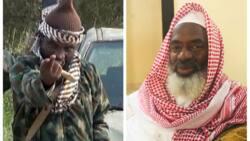 'Kaicon ka': Shekau ya caccaki Sheikh Gumi saboda tattaunawa da 'yan bindiga