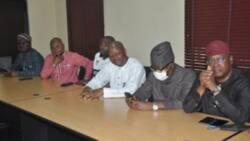 2023: 16 APC governors backing Tinubu for presidency, says Adeyeye