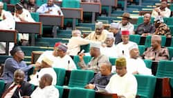 House of Reps under pressure to amend Universal Basic Education Act