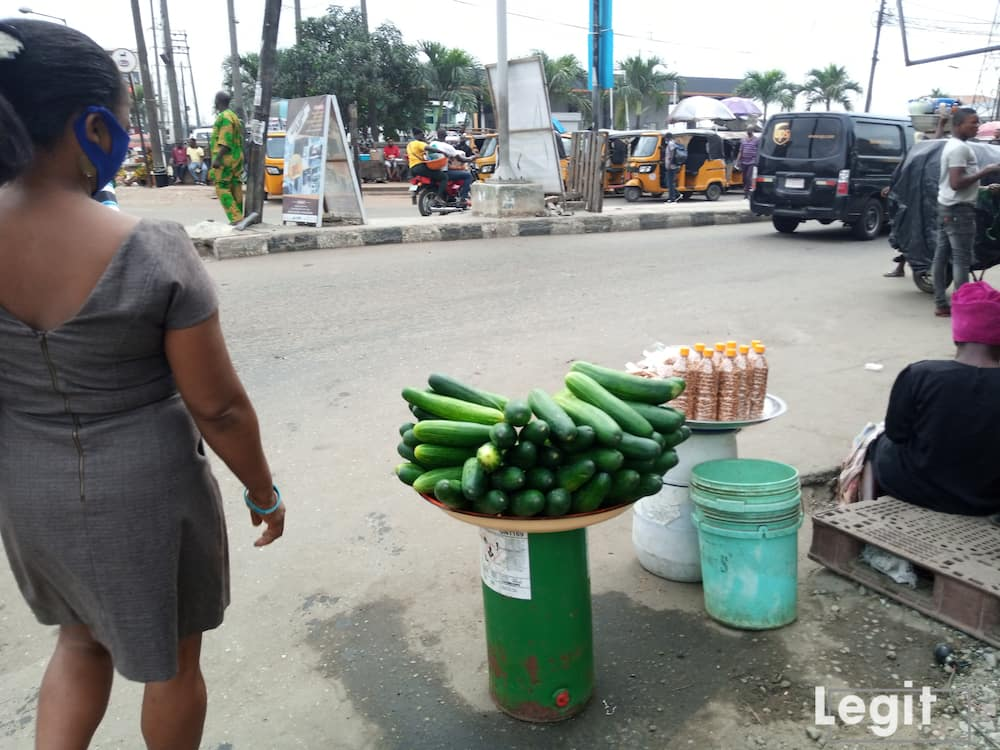 Regular consumption of cucumber keeps you hydrated just like watermelon. Photo credit: Esther Odili