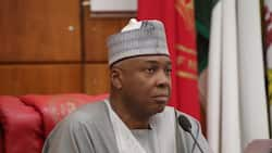 Buhari's anti-corruption war is mere propaganda - Saraki gives reasons