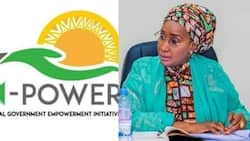 FG announces new employment plan for N-Power beneficiaries
