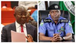 Fish out perpetrators of Ebonyi massacre - Southeast senators tell IGP