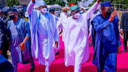 2023: I won't allow 'paper weight' politician to succeed me, Buhari finally declares