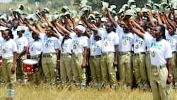 Elections: Don't collect food from politicians or you'll be punished - INEC warns NYSC members