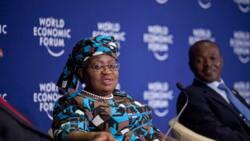 Ko da Amurka ba ta so, Gwamnatin Buhari ta lashi takobin ganin Okonjo-Iweala a WTO