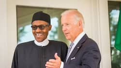 Read Buhari's first message to Biden after inauguration as 46th US president
