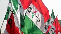 Fresh crisis hits PDP as opposition expels state chairman, woman leader, ex-minister, others