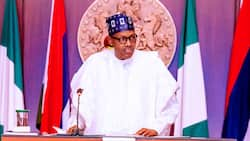 Anti-corruption war: FG reveals list of forfeited assets ready to be sold