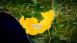 JUST IN: Dare-devil armed robbers attack Delta bank with bullets, dynamites, kill police inspector, 2 others, cart away cash