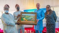 Nigerian Breweries Pioneers Solar Powered Manufacturing in Nigeria
