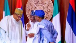 BREAKING: Reps back Senate, ask Buhari to declare bandits as terrorists