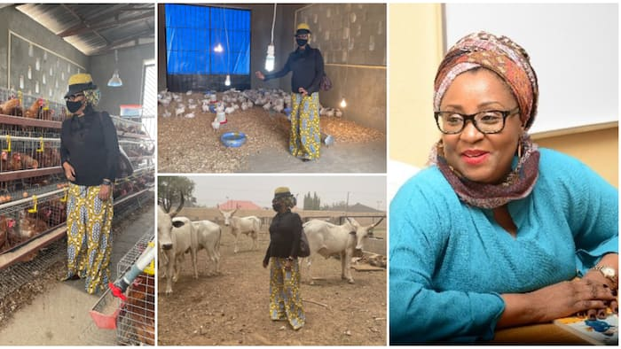 Governor's wife shows off her livestock farms, photos generate mixed reactions among Nigerians