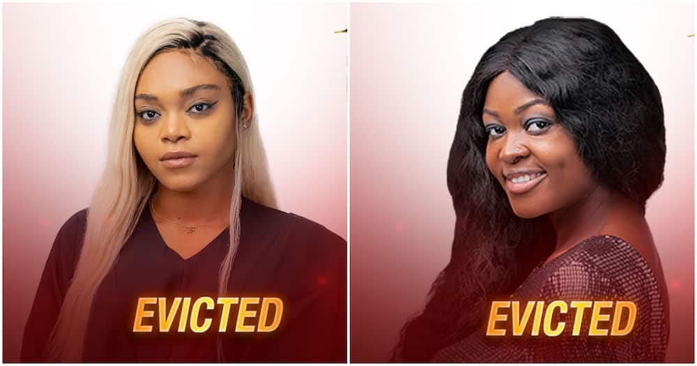 BBNaija: Moment housemates voted two contestants out of Big Brother's house (video)