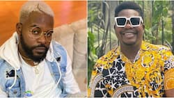 We can't continue like this: Falz reacts to arrest of Mr Macaroni, other protesters at Lekki tollgate