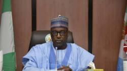 How some government officials assist bandits - Nigerian governor makes revelation