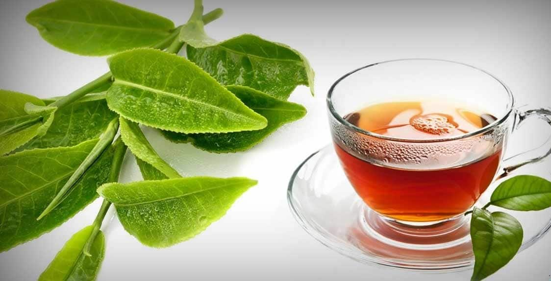 Image result for guava leaves tea