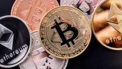Haramun ne yin kasuwancin Bitcoin, in ji Shehin Malami daga Kano