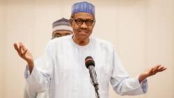 Gwamnatin Buhari ta ce ba ta da sha'awar kunyata masu daukar nauyin ta'addanci