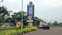 OAU students protest semester examinations amid ASUU strike as management warns against disruption