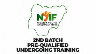 Nigeria Youth Investment Fund Budgets N75million to Empower Youths