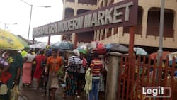 Legit.ng weekly market survey: These top Lagos markets offer affordable foodstuff