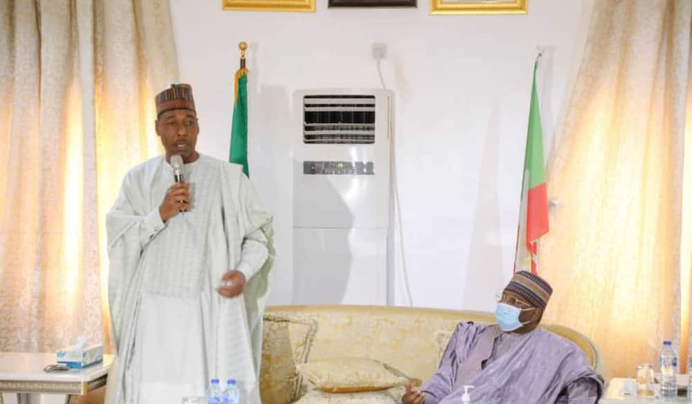 Buhari gives Borno youths plaudits for not looting like others