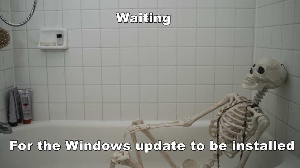 Funny skeleton memes