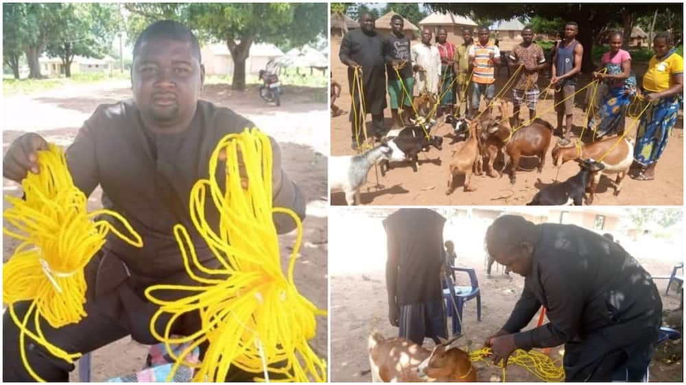 Politician donates ropes to his community members to tie their goats in Benue