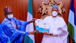2023: Has APC truly zoned presidency to south? Governor Buni gives important update