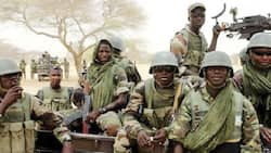 Just In: Over 13,000 Boko Haram Terrorists Have Surrendered So Far, Says DHQ