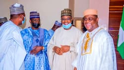 Siyasa a gefe: Hotunan Fani-Kayode yayin da ya shiga sahun manyan 'yan APC don halartan daurin auren dan Buhari