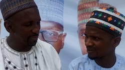 Constitution Review: Miyetti Allah finally breaks silence, demands scholarships for members