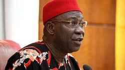 Ekweremadu condemns alleged extrajudicial killings by security agents during lockdown