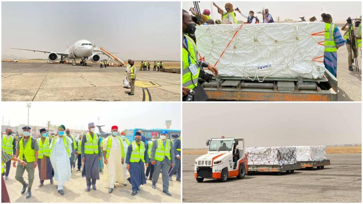 BREAKING: 1st batch of COVID-19 vaccine arrives Nigeria, health agency  shares photos ▷ Nigeria news | Legit.ng