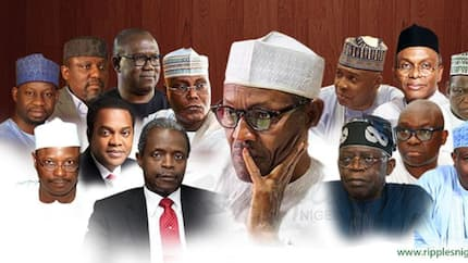 INEC list of candidates for elections 2019