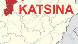 Dalilin da ya sa ƴan bindiga su ke kai farmaki wasu garuruwa 2 a Katsina, Ƴan Sanda