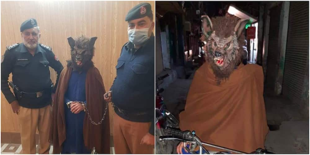 Man arrested for dressing as werewolf to scare people on new year's eve